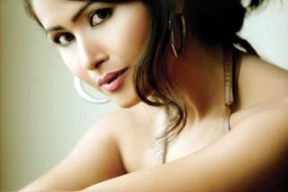 Celebrity Photo Of Divya Dwivedi