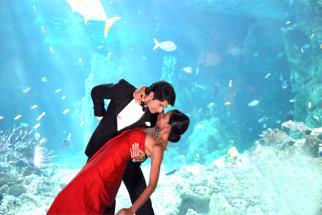 Movie Still From The Film From Sydney With Love,Sharad Malhotra