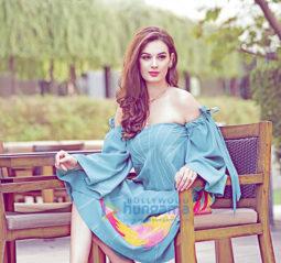 Celebrity Photo Of Evelyn Sharma