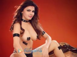 Sherlyn-Chopra-nude