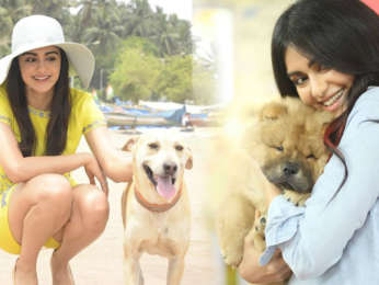 They are so GENTLE & LOVELY Adah Sharma's special DOG love