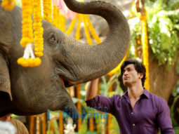 Movie Stills Of The Movie Junglee